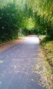 Alban Way