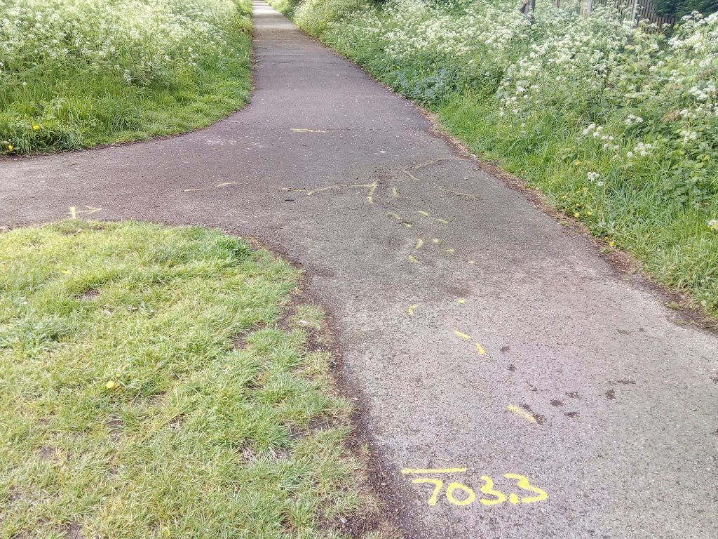 Roote damage to Alban Way marked up for repairs